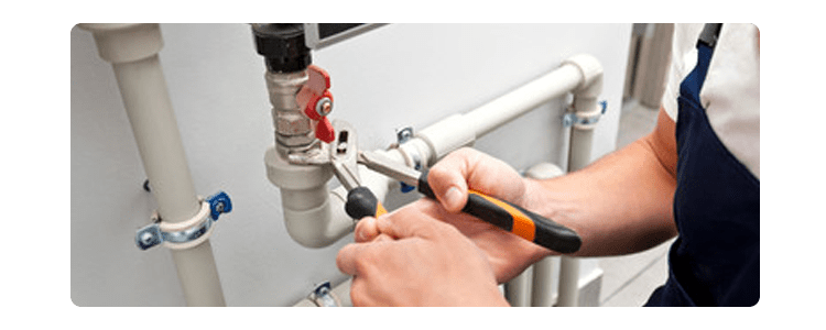 Plumber Manly Vale